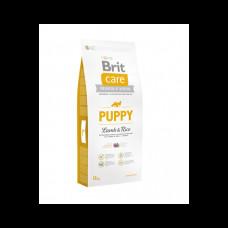BRIT CARE PUPPY bárány&rizs 12kg Hypoallergenic